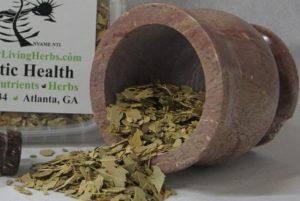 Eucalytus-Leaf